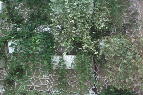 fotos_verde_wall-y_002_Wall-Y_interno__applicazione_civile