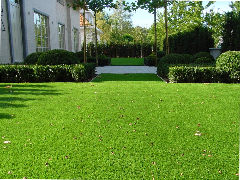 דשא סינטטי  כחול-לבן-כרמל פלור דיזיין